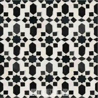 Moroccan Monochrome Tile
