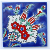 Iznik Tile Miami Florida